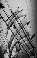 Windjammer British Isles, inspiration for the Lady Rebecca